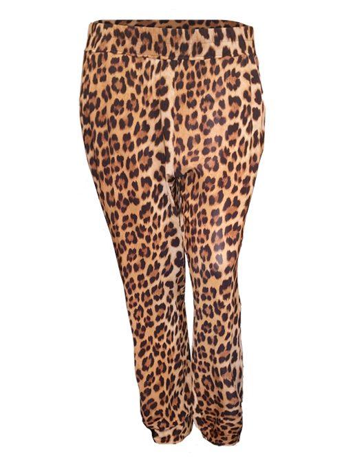 Glam Pants Deluxe, Leo