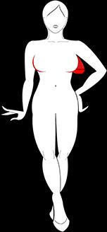 Typ V - Venus